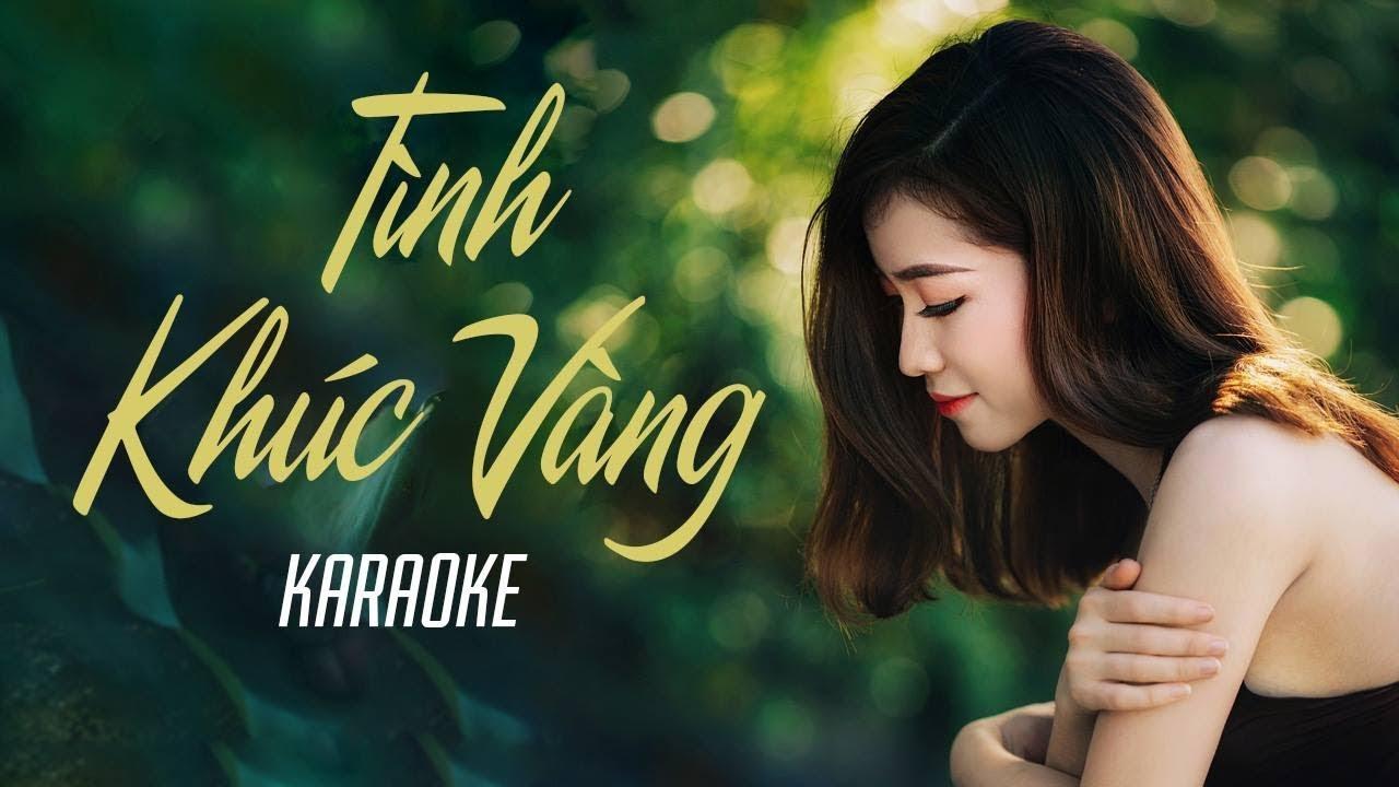 Tình Khúc Vàng - Đan Trường - Karaoke