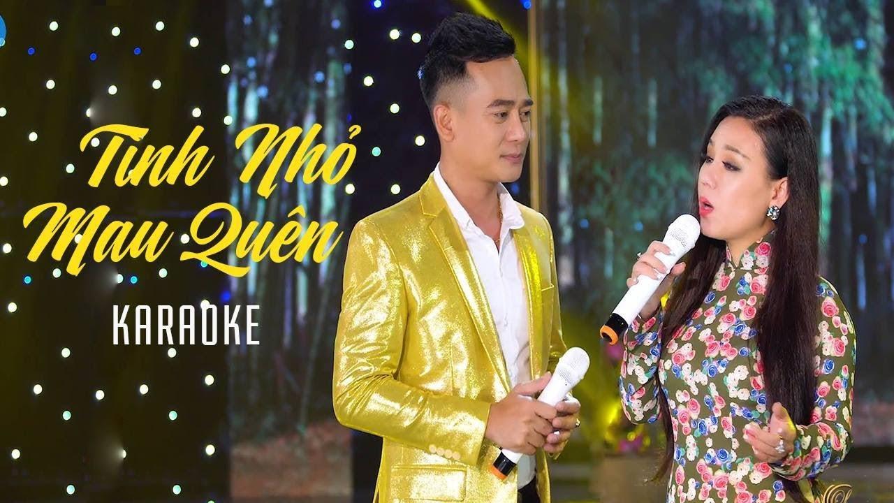 Tình Nhỏ Mau Quên - Lưu Ánh Loan ft Đoàn Minh - Karaoke