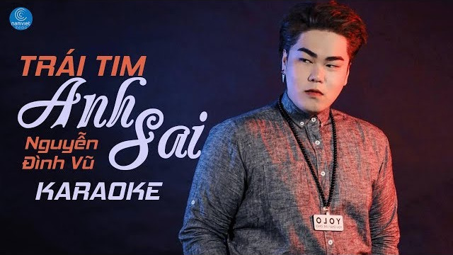 Trái Tim Anh Sai - Nguyễn Đình Vũ - Karaoke