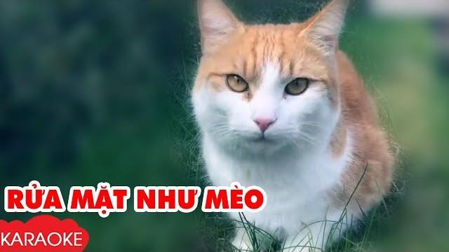 Rửa Mặt Như Mèo - Bé Xuân Mai - Karaoke