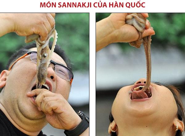 Sannakji Bạch tuộc sống của Hàn Quốc