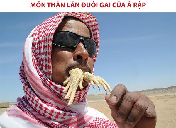 Món thằn lằn đuôi gai của người Ả Rập