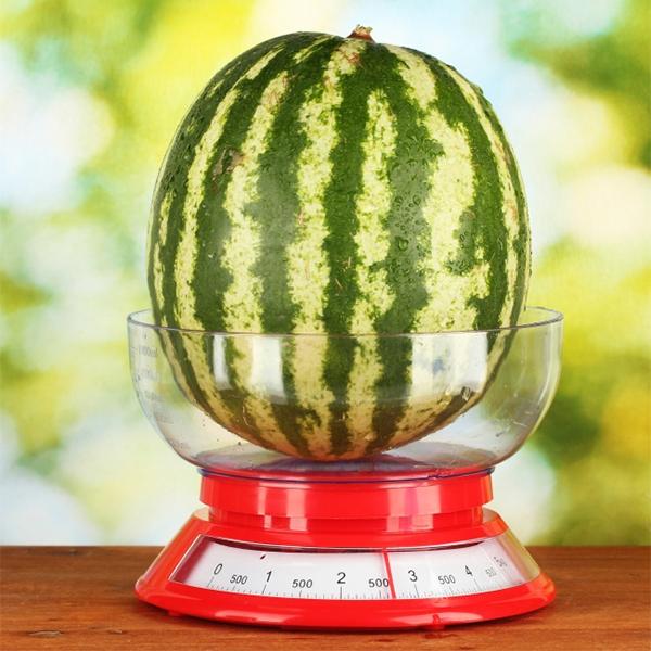 Chọn dưa hấu có kích cở và cân nặng chuẩn