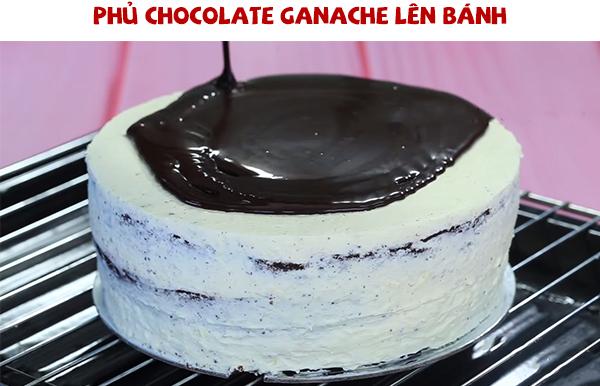Phủ chocolate ganache quanh bánh bông lan