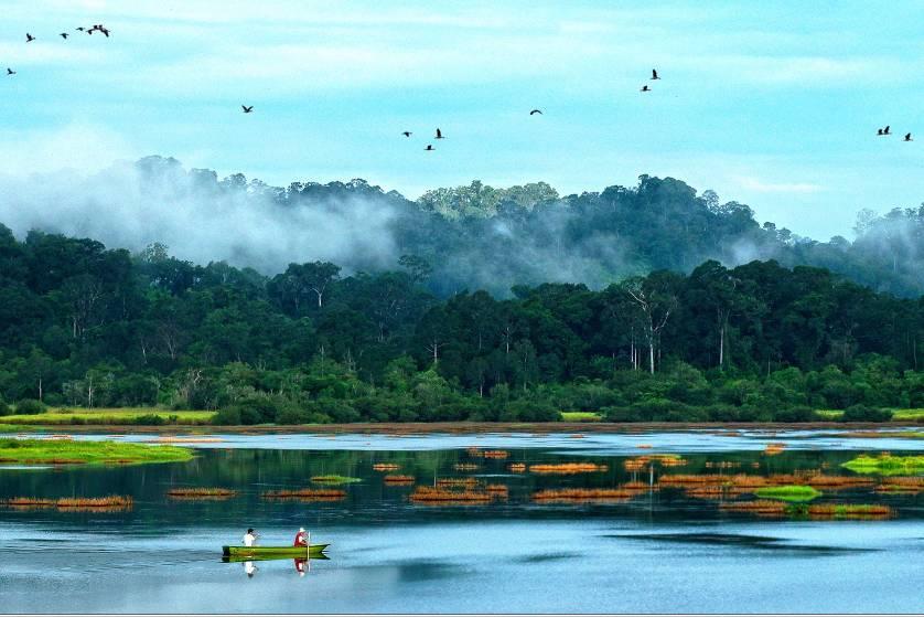 Tham quan khu rừng Nam Cát Tiên để biết thêm điểm đến hấp dẫn
