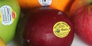 Mã trái cây có nghĩa gì? Có bao nhiêu mã trái cây